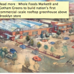 Whole Foods Scores Another Green Coup, Announces Rooftop Greenhouse in Gowanus Brooklyn Store