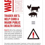 Consumers Union Continues to Highlight Trader Joe's Sale of Meat on Antibiotics While FDA Seeks Speedy Approval for New Antiobiotics to Combat Super Bugs